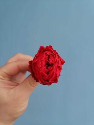 Роза алая 3 см пионовидная стабилизированная