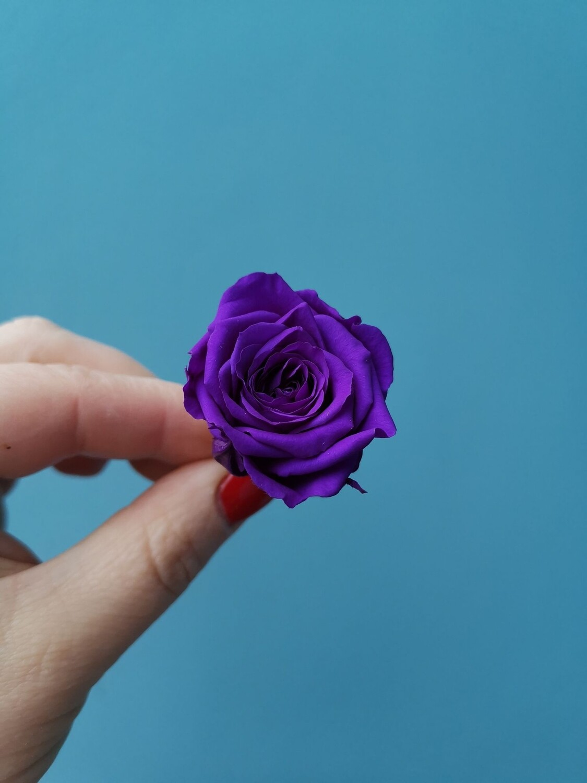 Роза фиолетовая 3см стабилизированная