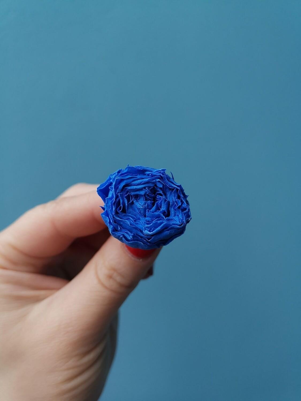 Роза синяя 2-2,5см пионовидная стабилизированная