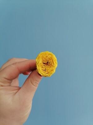 Роза жёлтая 2-2,5см пионовидная стабилизированная