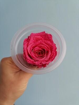 Роза малиновая 5см стабилизированная