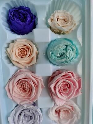 Розы стабилизированные микс 10шт
