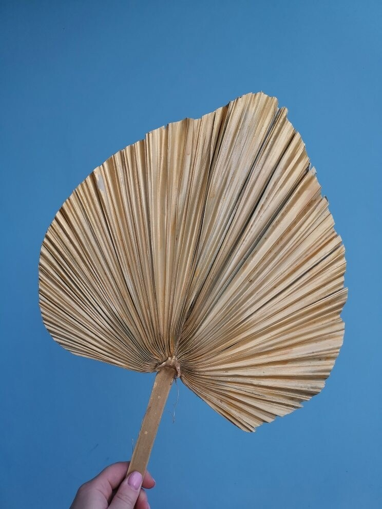 Palm leaf spear natural gold