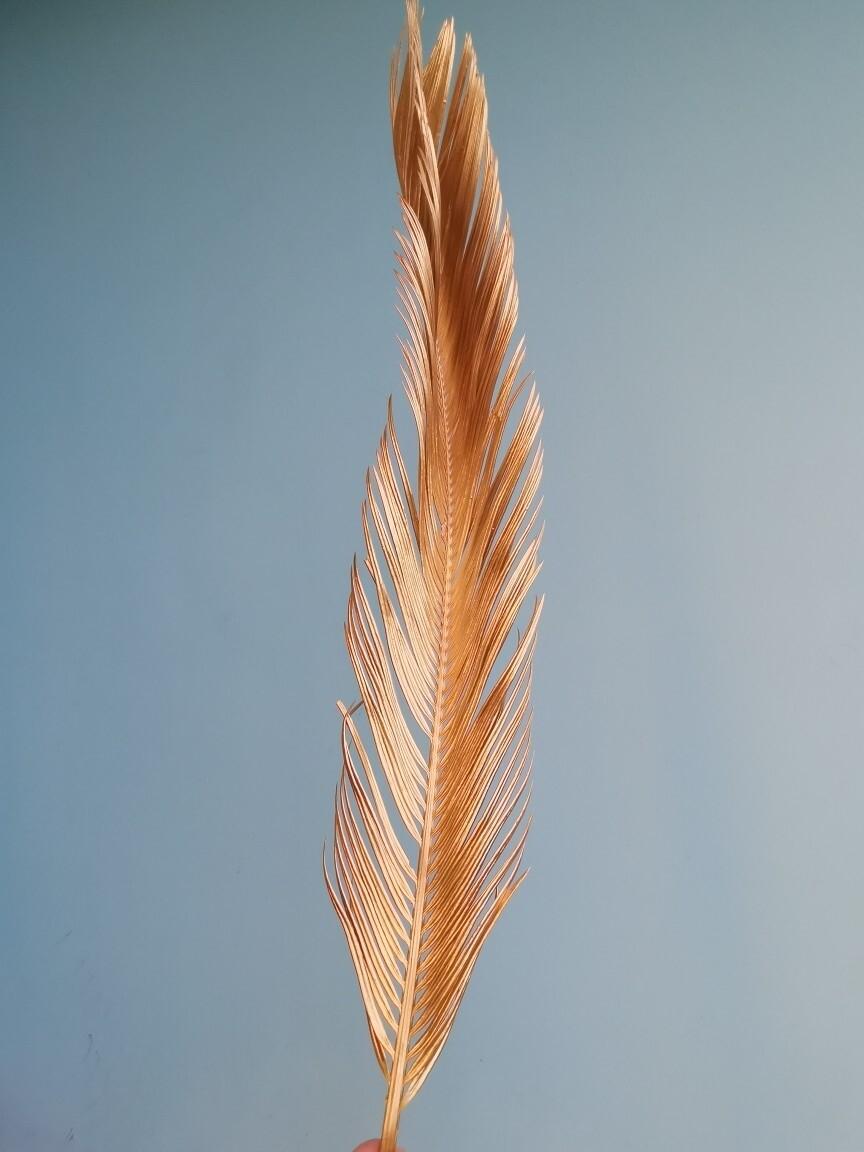 Лист пальмы бронза вытянутый натуральный