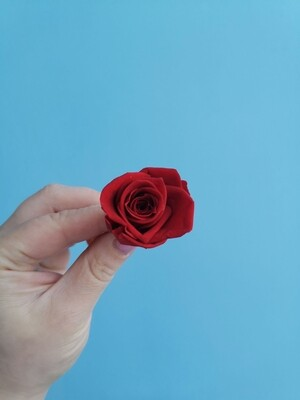 Роза красная 2-3см стабилизированная