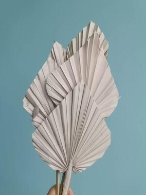 Листья пальмы копья магнолия 5шт