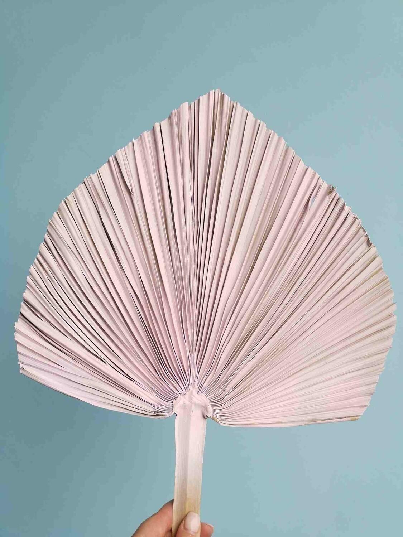 Лист пальмы копье розовый светлый