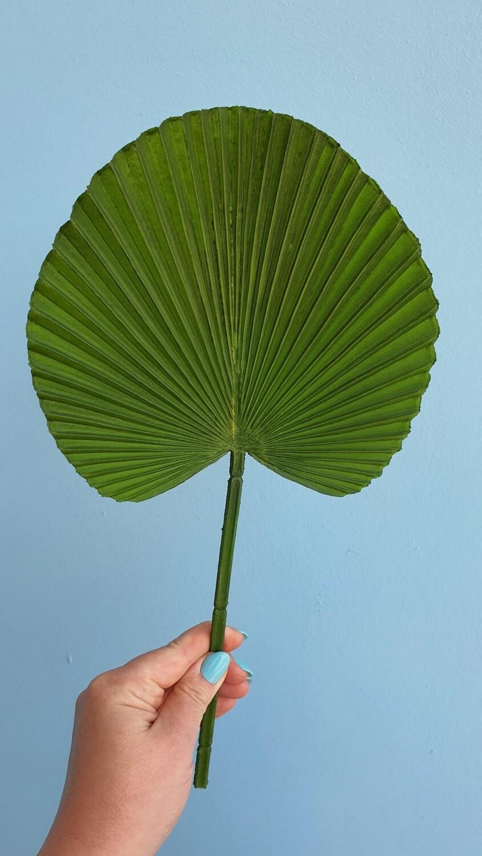 Лист пальмы зеленый искусственный 17*17*37