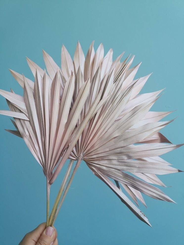 Листья пальмы сухие веером розовые 3 шт