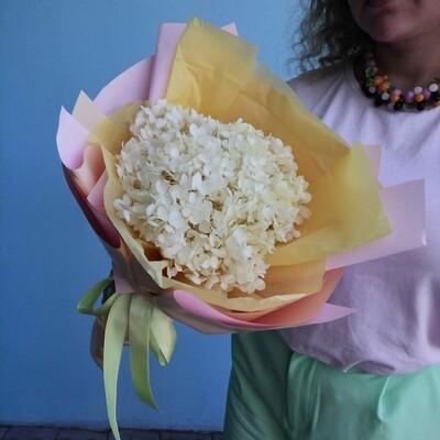 Bouquet of yellow stabilized hydrangea
