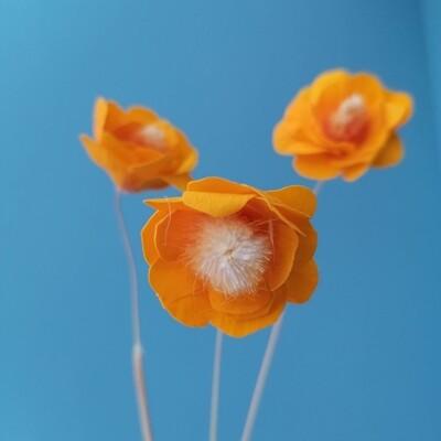 Цветок стабилизированный фантазийный оранжевый