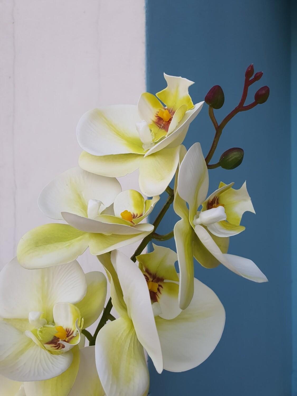 Орхидея салатовая фаленопсис искусственная