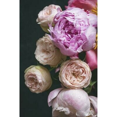 Mood Florals II
