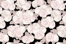 Décor Transfer - Jardin de Roses