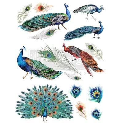 Décor Transfer - Peacock Dreams