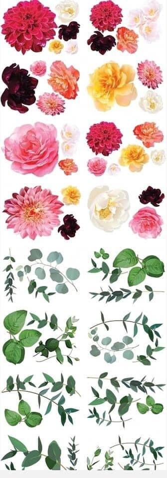 Décor Transfer: Splendid Flora