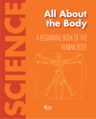 All About the Body