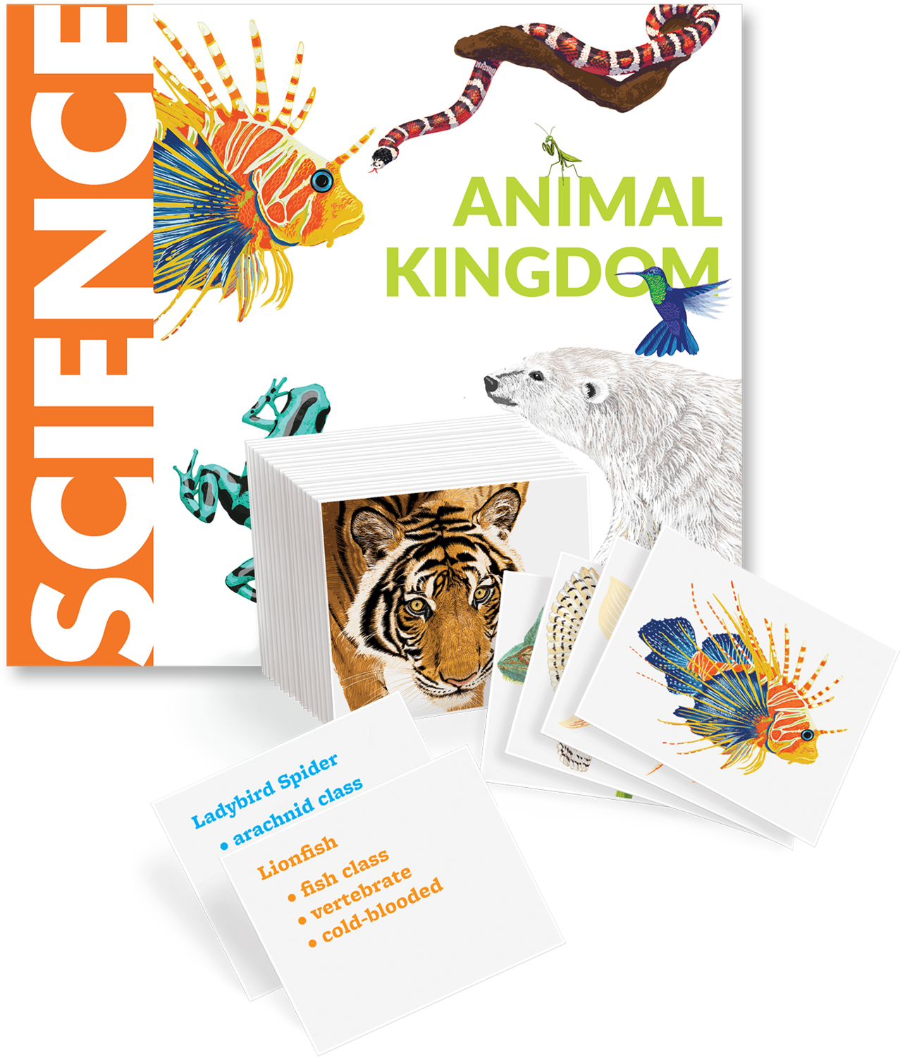 Animal Kingdom Book and Cards