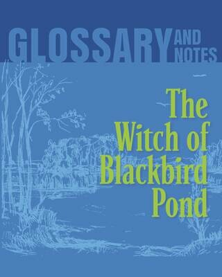 Glossary and Notes - The Witch of Blackbird Pond