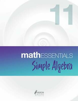 Math Essentials 11 – Simple Algebra