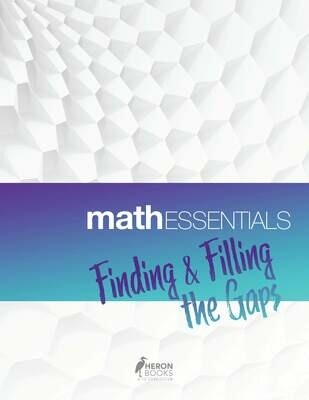 Math Essentials – Finding and Filling the Gaps