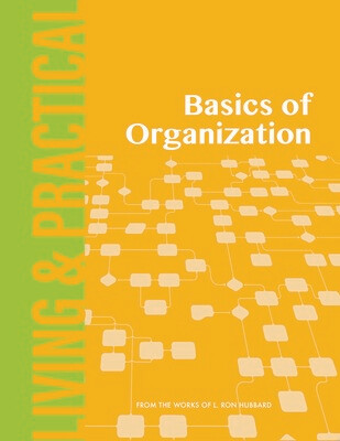 Basics of Organization
