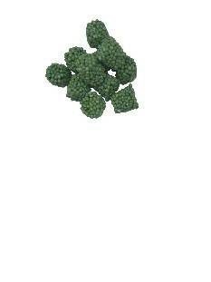 Fertilisant pour plant truffier Fertiplant (par lot de 50 cubes)