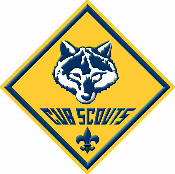Dues for 2021 - All Funds Support Badges and Scout Activities