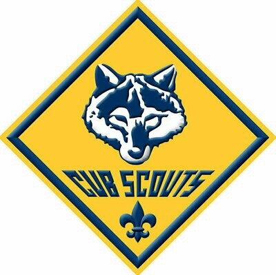 Scout Registration 2020-2021 (Existing Members)