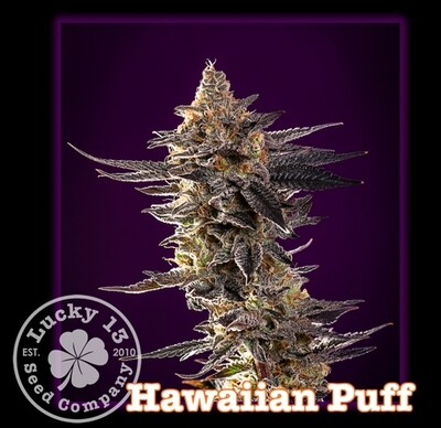 Hawaiian Puff