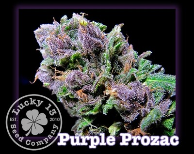 Purple Prozac