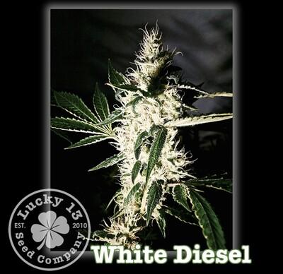 White Diesel