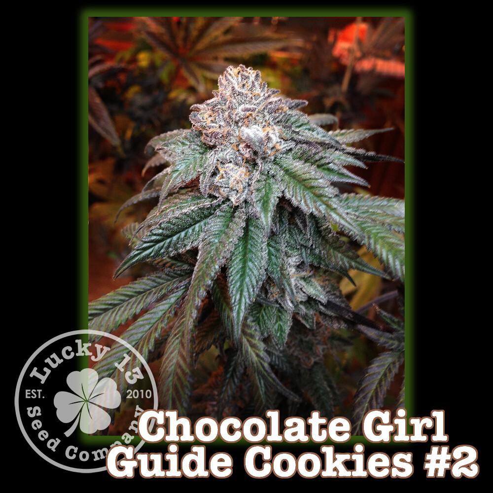 Chocolate Girl Guide Cookies #2