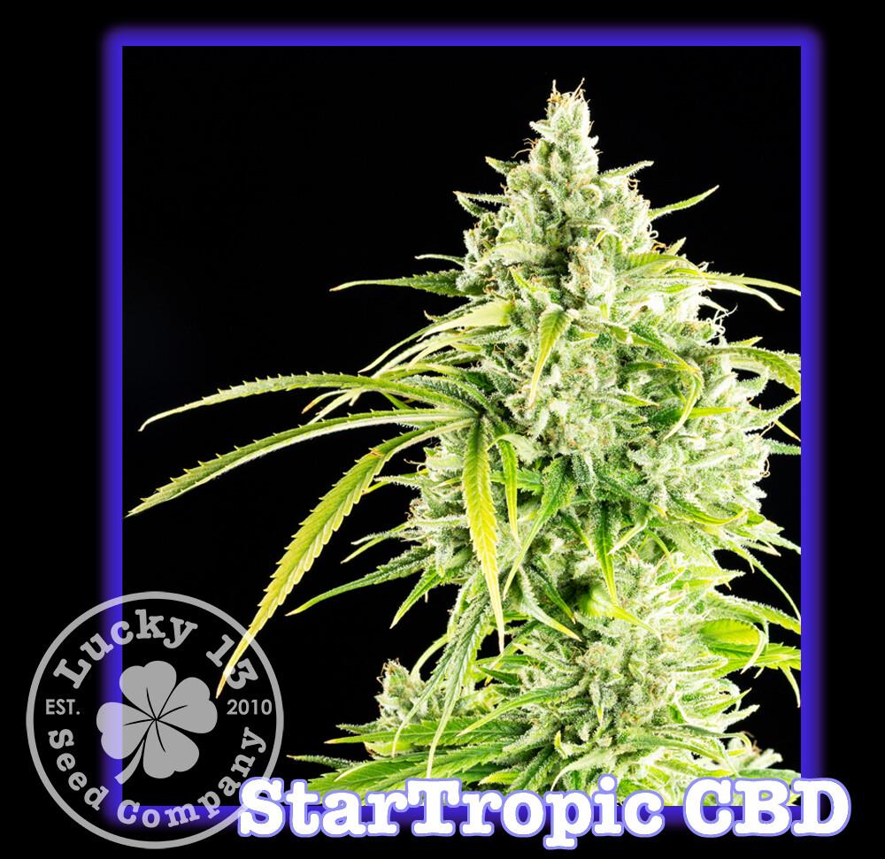 Startropic CBD