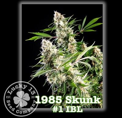 1985 Skunk #1 IBL