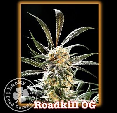 Roadkill OG