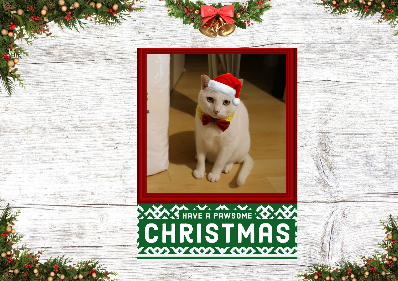 HK Christmas Card 4 (Merry Pawsmas)