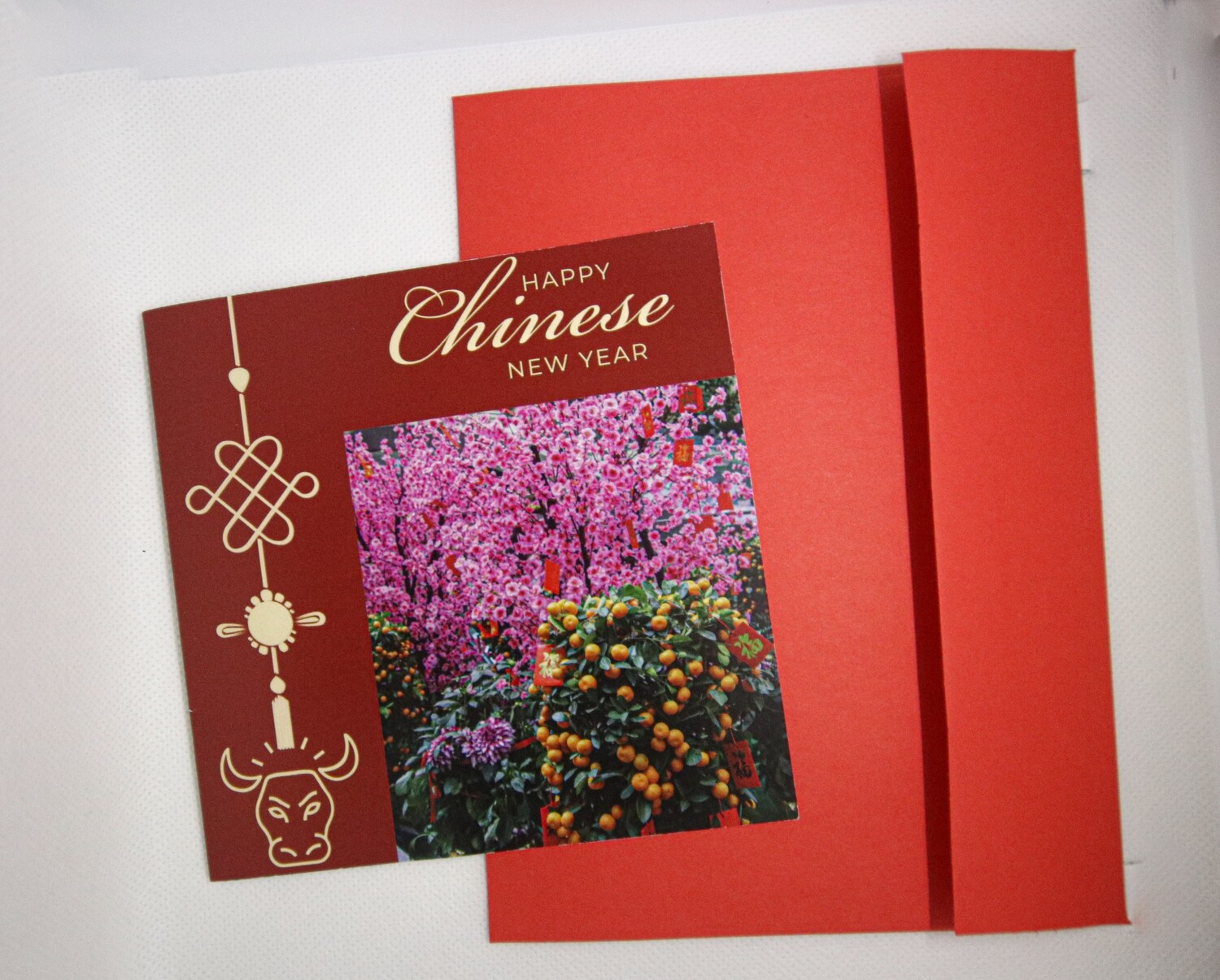 Chinese New Year Card 1( Orange Trees and Pink Flowers)