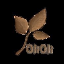 OliOli