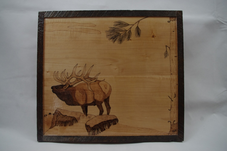 Bull Elk with a Rub Tree