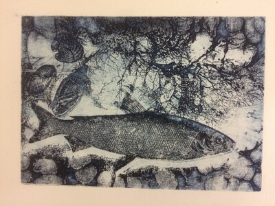 Solar Plate Etching Drypoint and Monoprinting with Seraphina Martin