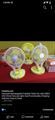 """Portable 12"""" Fan With Light"""