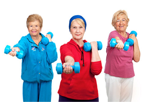Senior/Youth Fitness