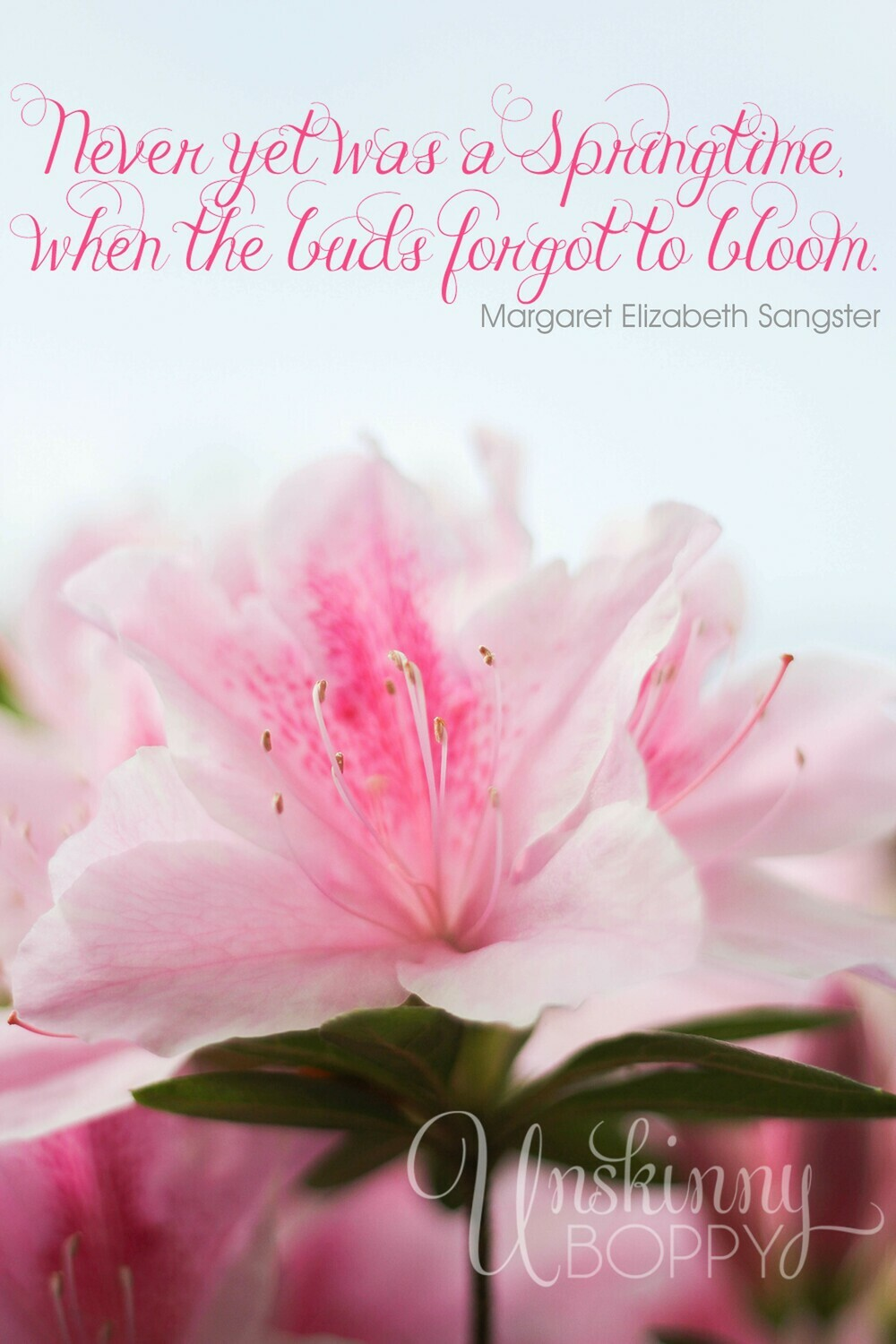 Pink Azaleas in the Springtime Free Printable Quote