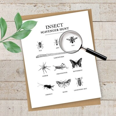 Summertime Fun Series- Insect Scavenger Hunt Free Printable