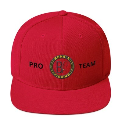 PRO TEAM Black Label Snapback