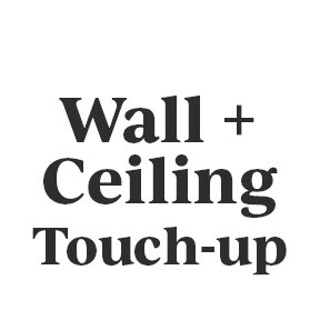 Wall + Ceiling Touch-up Kit
