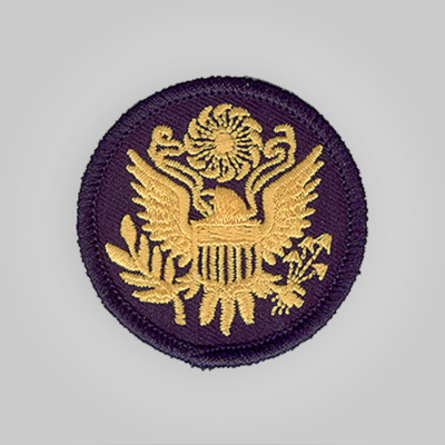 Army Insignia Patch