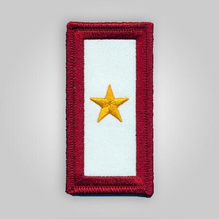 Gold Star Service Patch
