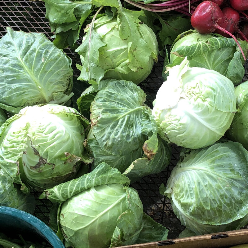 Cabbage, by the pound